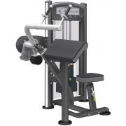 Arm Extension - Tricepsz gép
